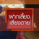 ฝากเลี้ยงเสี่ยงตาย (ThaiPBS 04/05/2561 )
